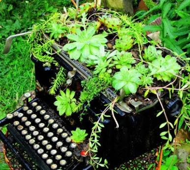 r+typewriter+one